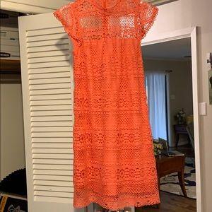 Coral Lace Mini Dress.